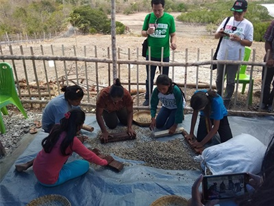 Social Empowerment for Seed Process